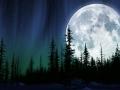 Sequoia Moonrise - production background